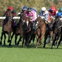 Canada woodbine horse racing betting odds lannett 1326 betting
